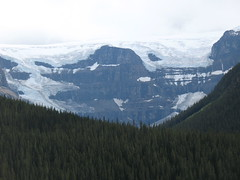 IMG_2597 (alejandi) Tags: rockies roadtrip icefieldsparkway