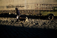 (todoslosantos* Juan Antonio Balsalobre) Tags: world dog chien dogs animal perro perros juanantoniobalsalobre balsalobre juanantoniobalsalobrecarbonmadecom