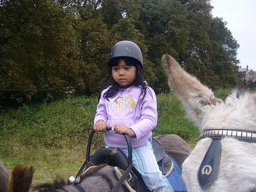 rahil on donkey