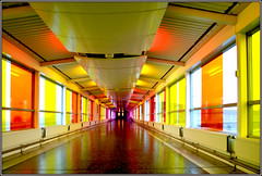 Colourful Sweden (roomman) Tags: windows colour bird art window water glass birds architecture airport colours sweden stockholm weekend empty air transport jet style atmosphere voice terminal hallway transportation sound lone lonely nordic colourful arrival essa jetway terminals glas sounds concourse 2007 voices airtransport arlanda arn stockholmarlanda wwwlfvse wwwarlandase