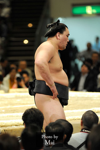 日馬富士 画像40