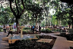 60052408 (wolfgangkaehler) Tags: park old people centralpark havana cuba parks caribbean cuban oldtown oldcity cubans parquecentral localpeople oldhavana cubanpeople oldcities havanacuba oldtowns localpark localparks peopleworldwide