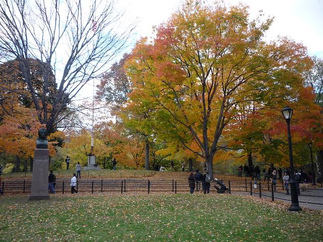 Central Park October 31, 2010