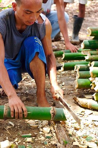 man bamboo cutting la union kawayan Pinoy Filipino Pilipino Buhay  people pictures photos life Philippinen  菲律宾  菲律賓  필리핀(공화국) Philippines