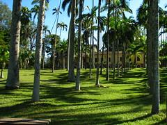 Rio Claro - SP (Daniel Pascoal) Tags: public horto rioclaro hortoflorestal danielpg danielpascoal