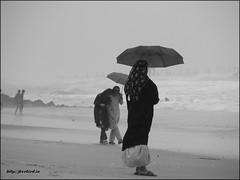 . (Bobinson K B) Tags: ocean blackandwhite india beach rain umbrella kerala monsoon portfolio questfortherest calicut kozhikode