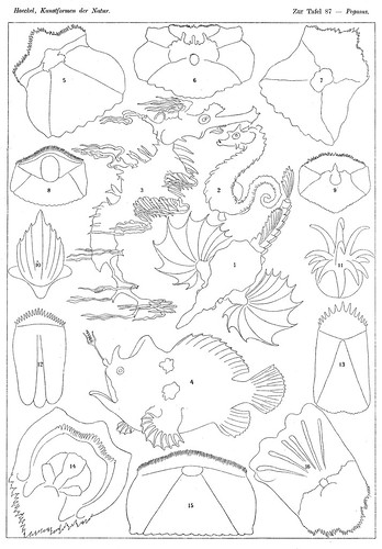 multi cultural coloring pages - photo#36