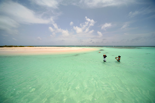 snorkel point