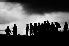 audience (Oliver ivkovi) Tags: people bw white black car horizontal race oliver audience serbia crap cb subotica derby belo vojvodina srbija crno zivkovic 400d publika