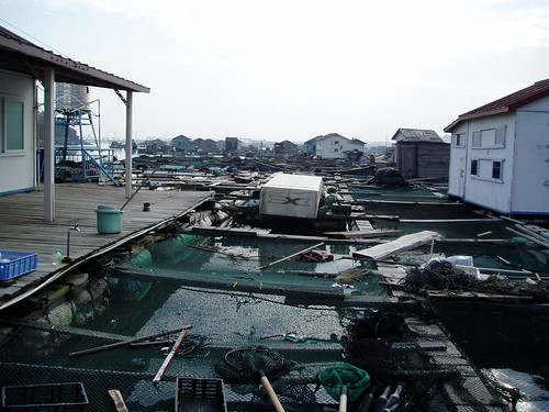 idealx fishhouse