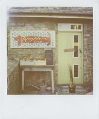 Pola Vintage Shop (Lizzie Staley) Tags: door autumn green fall film shop vintage polaroid 600 expired 2010 sausagedog roidweek