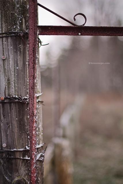 abandoned fence 309/365