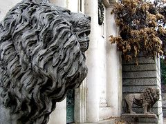 Guardianes II (Jorgelixious) Tags: cemetery general cementerio lions coolpix fujifilm leones s5600
