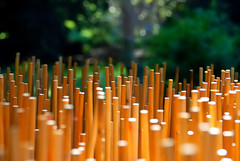 wood dowels for lanterns - by paul+photos=moody