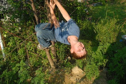 Jackson hanging