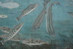 August  5th -  2007 050 (Jeannette Greaves) Tags: fish mural manitoba boardwalk gimli icelandicfestival