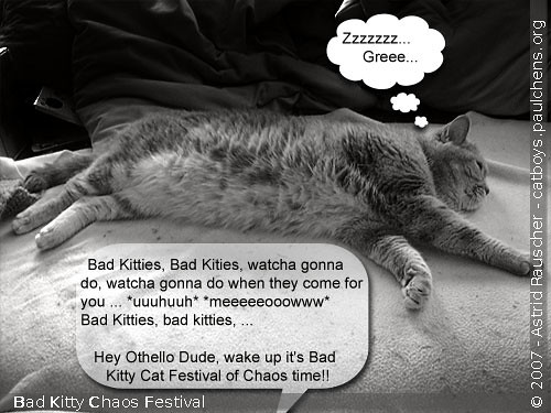 Bad Kitty Cat Festival Of Chaos #5
