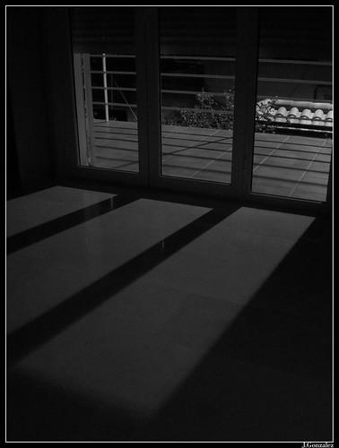 Timida asoma por la ventana