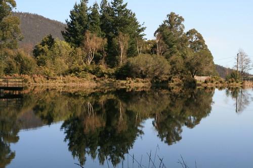 Warburton reflections