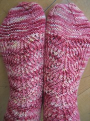 Dahlia socks. Round toe.
