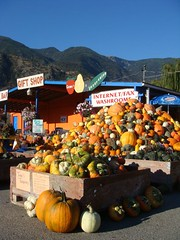Gerry's Fruit Stand in Keremeos BC