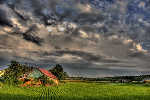The Farm Defiant