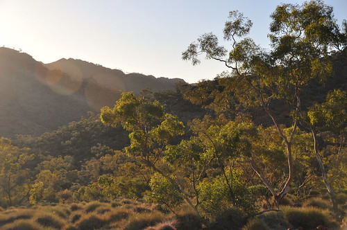 grasswren country is drilling country! this beautiful hanging-valley on the ridgetop track is back in the hands of the mining industry