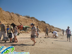 IMG_8636 (Streamer -  ) Tags: ocean sea people green beach nature ecology up israel movement garbage group cleanup clean scouts bags friday  nonprofit streamer initiative enviornment     ashkelon         ashqelon    volonteers