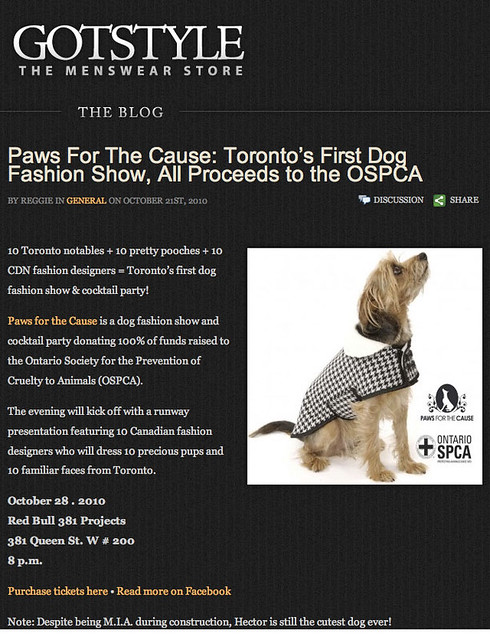 Gotstyle The Menswear Store - October 21 2010 - Online by knotpr