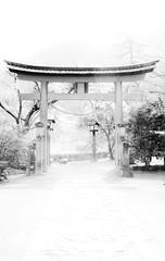 Heaven's Gate (Fesapo) Tags: street blackandwhite bw japan canon temple shrine awesome shimane majestic torii tsuwano myfavouriteplacesintheworld littlekyoto canonefs1855mmf3556is
