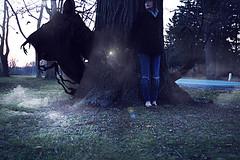 all falls cold (londonscene) Tags: park fog canon dark death scary wand magic harry potter hiding eater dumbledore