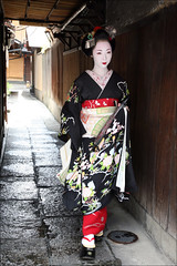 K O S E N : Hassaku (mboogiedown) Tags: travel summer cute girl beauty japan asian japanese women kyoto asia traditional culture august maiko geiko geisha kawaii kimono gion tradition ro kansai susuki kanzashi okobo hassaku hanakanzashi oshiroi kosen kobu discoverkyoto kuromotsuki