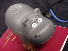 Hippo plus passport