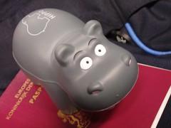 Hippo plus passport