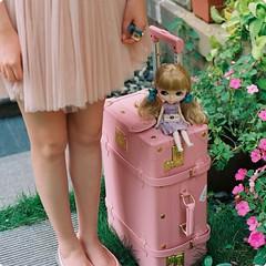 我要去哪里。我哪儿都不能去。