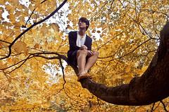 289/365 (kasey d,) Tags: boy tree fall colors leaves joe 365 nikond40