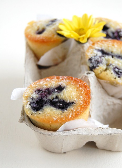 Orange blueberry friands / Friands de laranja e mirtilo