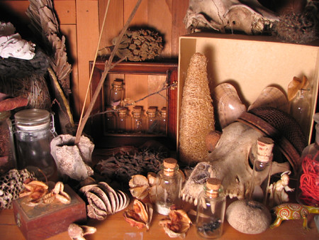 Erin Curry art- photograph of collection of curiosities