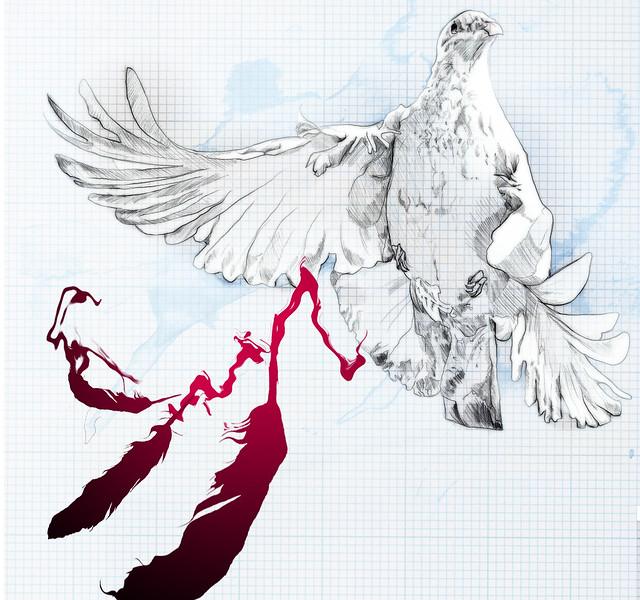 BIRDS & DEATHS