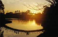 Super Sunset (visualkreator) Tags: park bridge sunset shadow brazil sky people urban sun reflection nature water beautiful beauty clouds mirror ibirapuera 100earthcomments