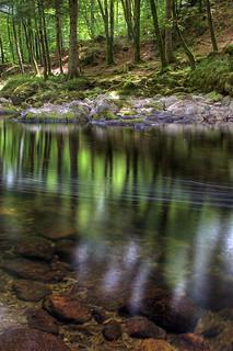 Afon Llugwy Reflections