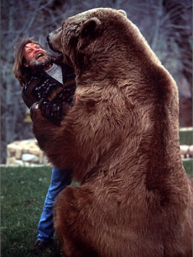 доклад про медведя Доклад про бурого медведя