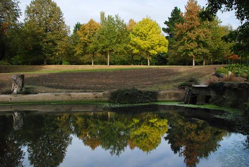 Syon Park 14