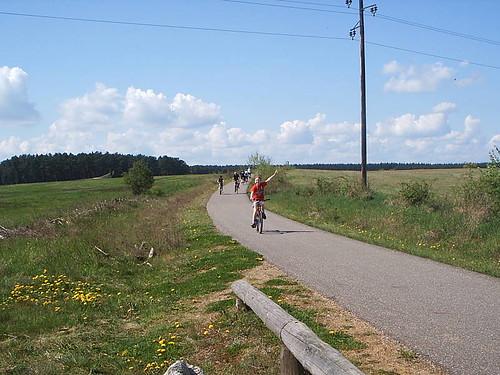 nochmal Müritz-Nationalpark