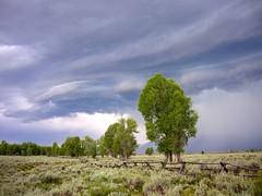 A Stormy Evening (nick.matthies) Tags: storm nationalpark thunderstorm grandteton