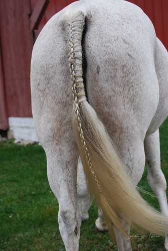 diamond braided tail