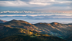 Alps View (andywon) Tags: autumn trees panorama mountains alps fall nature germany landscape hills schwarzwald blackforest badenwrttemberg belchen explored gettyimagesgermanyq1