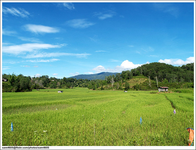 Kampung Patau, Tambunan