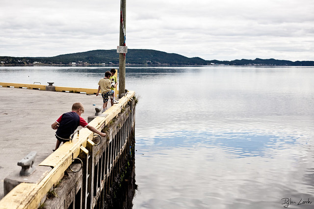Newfoundland Teaser 3
