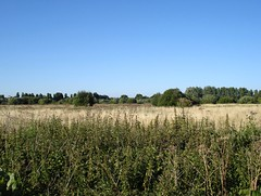 Picture of South Norwood Country Park
